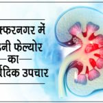 मुजफ्फरनगर में किडनी फेल्योर का आयुर्वेदिक उपचार